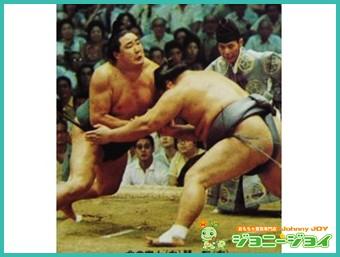 旧,カルビー,大相撲カード,北の富士勝昭,琴桜,買取,売る,